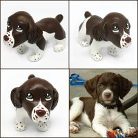 Rodeo the Brittany Spaniel Pupple by LeiliaClay
