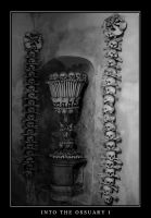 Into the ossuary 1 by sturm