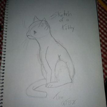 Sketch of a Kitty by TheGTBX