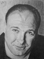 James Gandolfini Tony Soprano by Do-Down