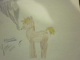 havoc pony!!!! by LittleCrowHaHaHa