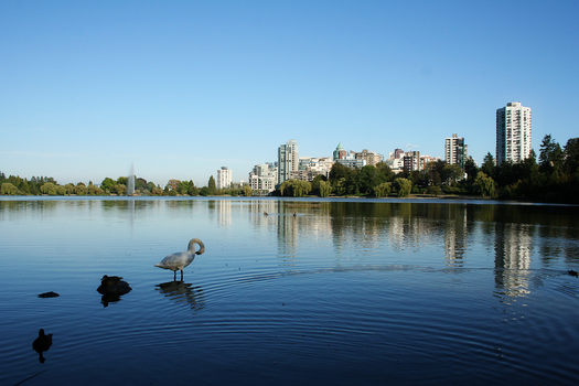 Lost Lagoon by snowhitequeenx