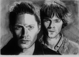 The Winchesters by alainmi