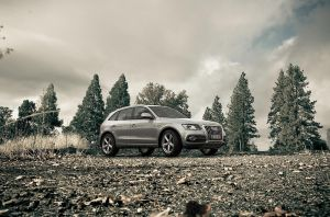 Audi Q5 Woodland by MUCK-ONE