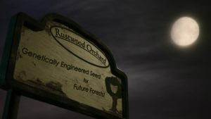 Sign by rustwood