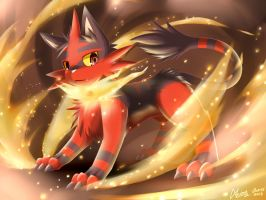 Flame Cat from Hell by AKamihara
