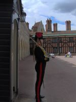 Windsor guard by cekcek