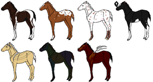 Watcher adopts by RedOak-Stables