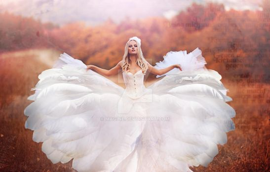 angel by magine
