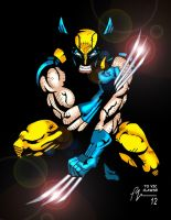 Wolverine Claws by Dragonslayer9000