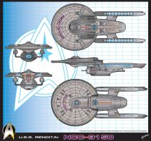 U.S.S.Renditai Final Art by stourangeau