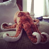 Cuddly Octopus by wiebkefesch
