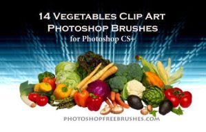 14 Vegetable PS Brushes by fiftyfivepixels