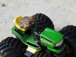 Froggy On Tractor by jasondoggy101