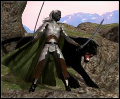 Drizzt and Guenhwyvar by DrowElfMorwen