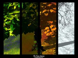 The Four Seasons by da-jedas