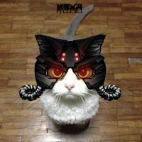 Helghast cat by easycheuvreuille