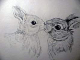 bunny kisses by chrisravensar