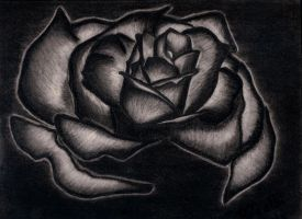 Black rose.. by preethi524