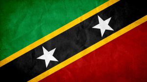Saint Kitts and Nevis Grunge Flag by SyNDiKaTa-NP