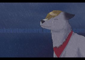 Crying in the rain by AkakoToramaru