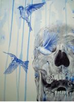 skull and birds 7 by PaulAlexanderThornto
