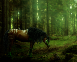 Friend of the forest by gwentigreen