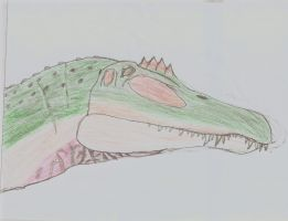 A Spinosaurus drawing by TheSpiderAdventurer