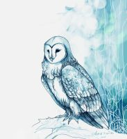 winter owl by Namisis