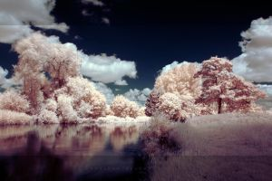 ir worlds 015 by Sebasket