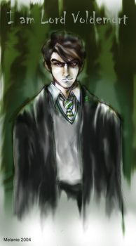 Tom Riddle by usagistu