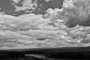 Welcome to the Wind Farm 2 by Salemburn