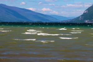 Wind on the Lake by organicvision