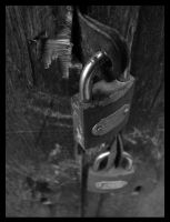padlockS series III by SENIL07
