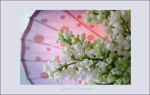 Japanese Spring by Buble