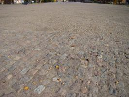Cobble Stone Pavement 02 by LuDa-Stock