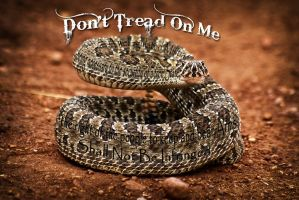 Dont Tread On Me by ChrisMulvihill