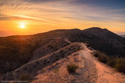 Path toward the sun by isotophoto