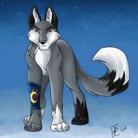 Comet the Wolf by ShadowedFate