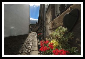 Cobbled paths by SnapperRod
