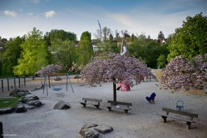 lone playground in spring by blacky-mo