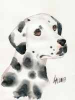 Dog week: Dalmatian by Laichi