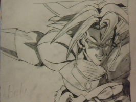 Broly 6 by foxtrot20