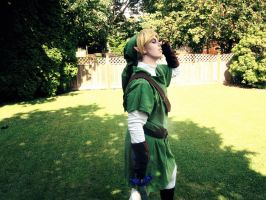 Link - Super Smash Bros Taunt by damselle-xo