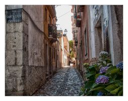 Rua Santa Cruz do Castelo by Jack-Nobre