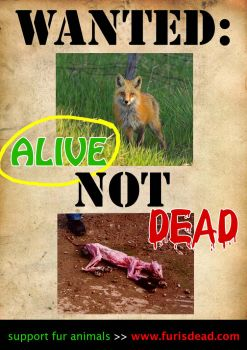 WANTED alive NOT dead by animals4ever