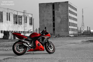 Yamaha YZF-R6 by Roby0309