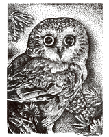 Pointillism Owl Drawing by SuperSibataru