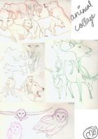 Animal Sketches by marbri