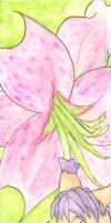 Flower Series - Lily by Tillette